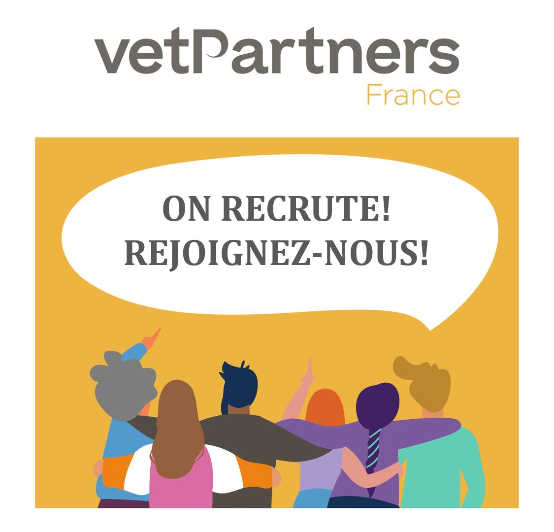 La filiale France de VetPartners recherche, dans le cadre de son développement rapide, un.e Responsable Digital.