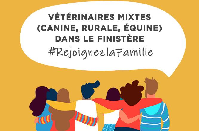 2 Vétérinaires mixtes dans le Finistère